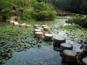 Choix emplacement selon taille bassin d'eau